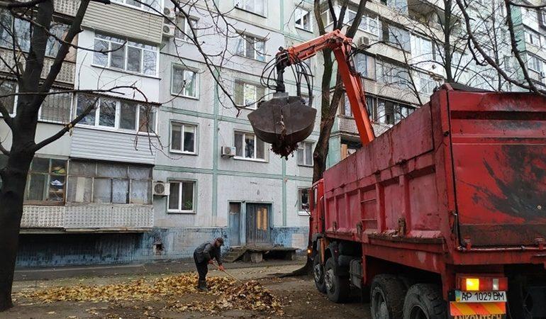В Запорожье вывозят листья