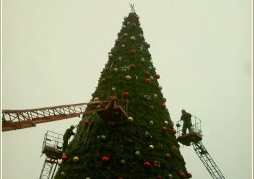 В Запорожье гирляндят главную елку города