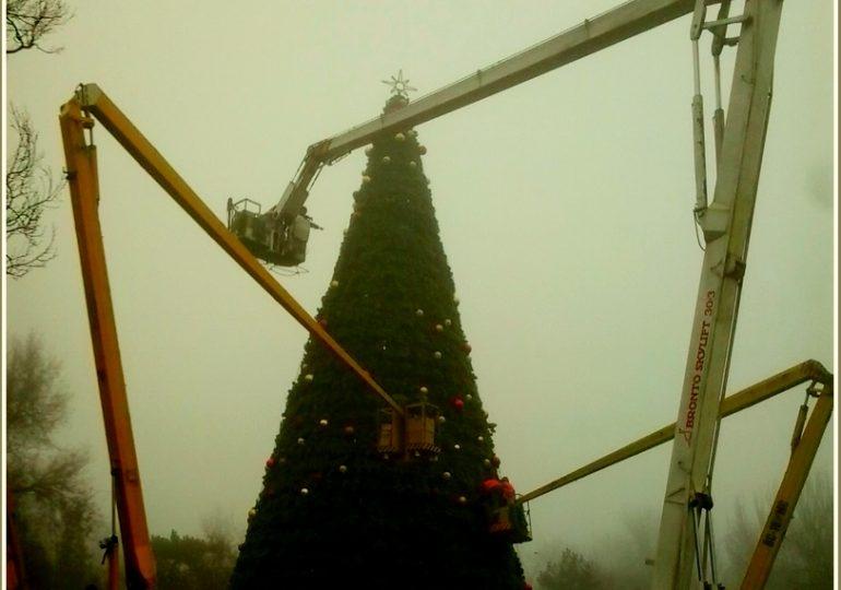 В Запорожье украшают главную ёлку города