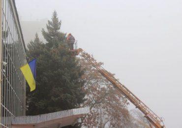 В Мелитополе украшают елки на главной площади
