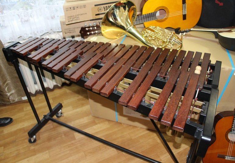 В Запорожье школы эстетического воспитания получили новые музыкальные инструменты