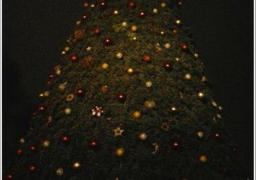 В Запорожье обнаружилась потёмная ёлка