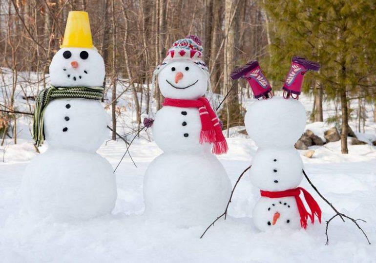 В Запорожской епархии назначен «Парад снеговиков»