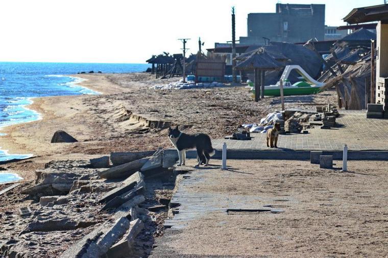 В Бердянске море подмывает стоянку на Косе (фото)