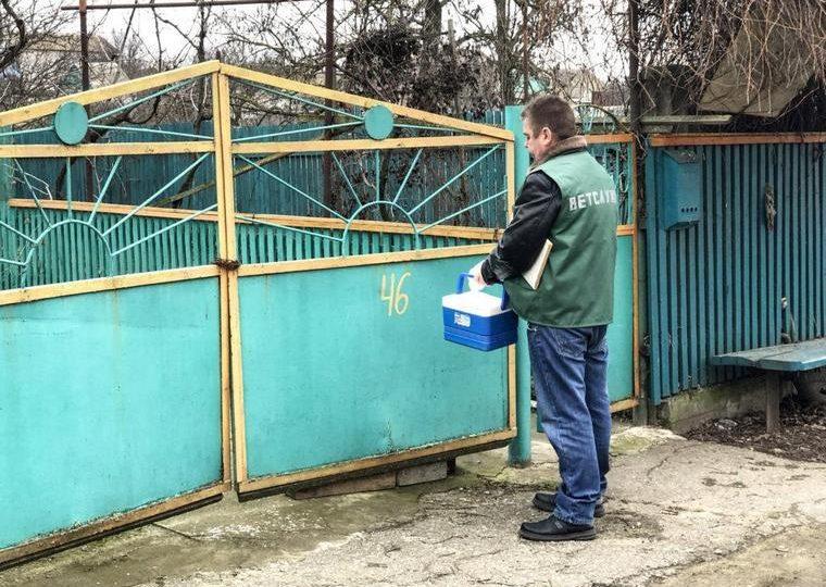 В Бердянске проводят массовую вакцинацию животных