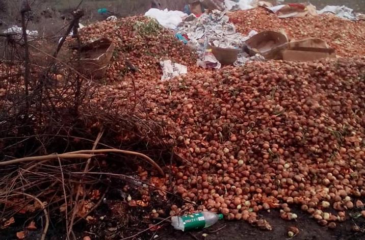 В Мелитопольском районе берег реки Молочной загадили гнилыми овощами