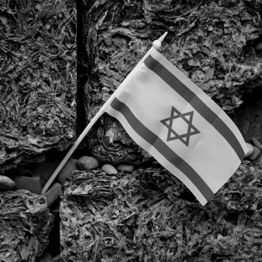Освенцим (Auschwitz): Мы помним (фото)