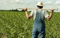 На розвиток фермерства ЄС надасть Україні 26 млн євро