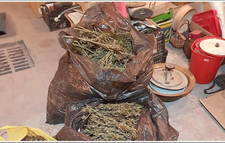 У Мелітополі під час обшуку поліцейські вилучили більше 5 кг канабісу