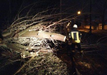 Рятувальники Запорізької області ліквідували наслідки негоди