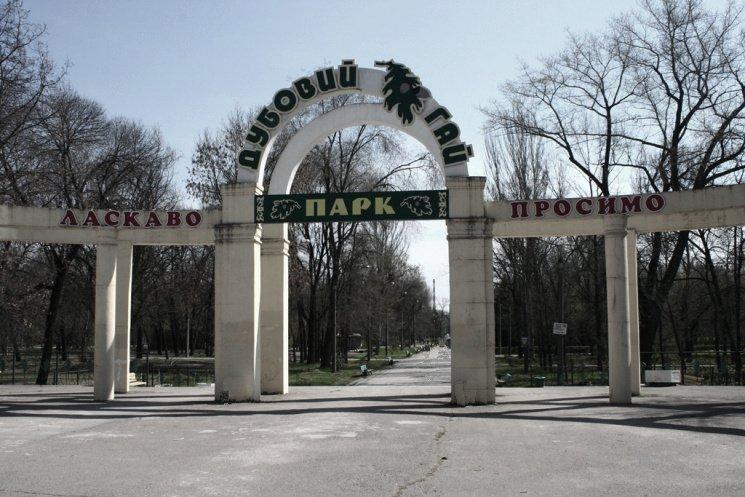 Оголосили про підозру заступнику директора парку «Дубовий гай»