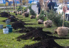 Плани масштабного озеленення відтерміновуються