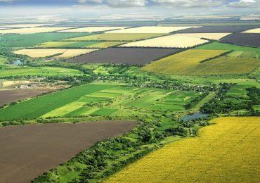 У Запорізькій області власники паїв одержали близько 40 млн грн орендної плати