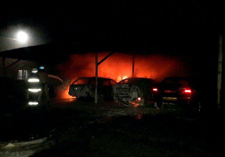 В Запорожской области на автостоянке ночью горели 9 автомобилей (фото)