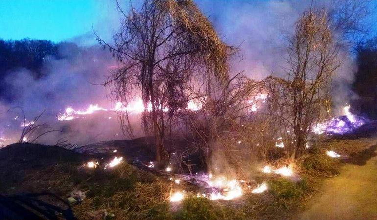На території Запорізької  області рятувальники ліквідували 22 пожежі в екосистемах