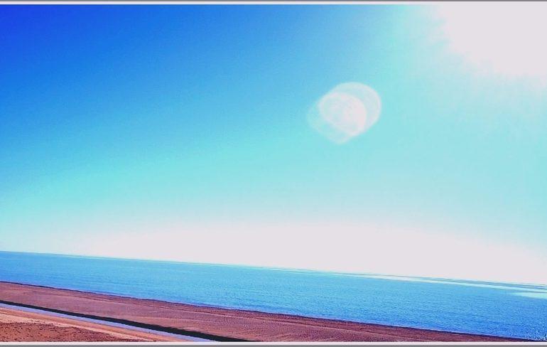 В Запорожской области солнце над морем сопровождает… медуза (фото)