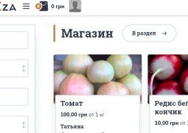 В Запорізькій області запрацювала віртуальна теплиця з реальною плодово-овочевою продукцією