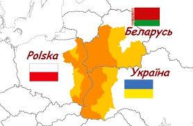 Українських підлітків залучають до більш зеленого майбутнього