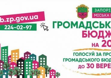 Общественный бюджет Запорожья-2020: подача проектов начнется 1 июня