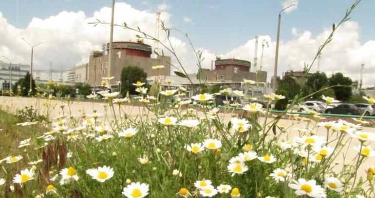 На Запорожской АЭС блок №6 отключен от энергосистемы и выведен в резерв