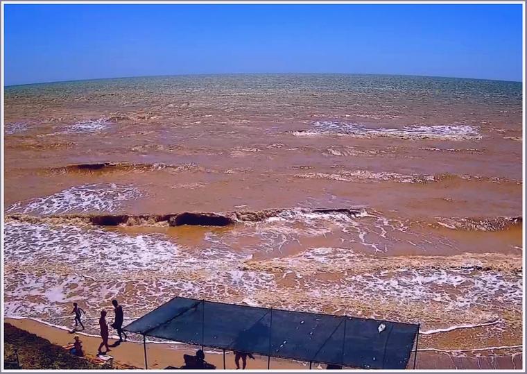 В Запорожской области море стало необычного цвета