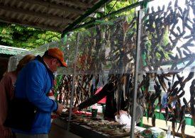 Рыбный рынок. Геническ - 2020 (видео)