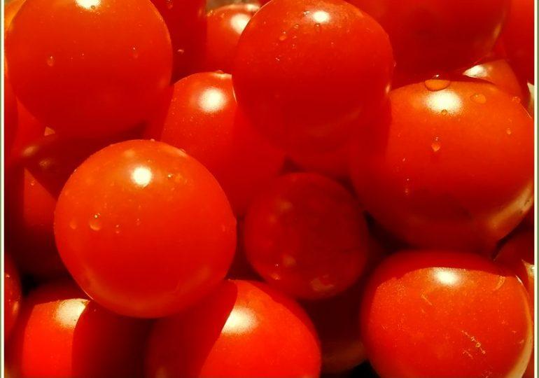 В Запорожье подешевели помидоры: черри продают по 25 гривен