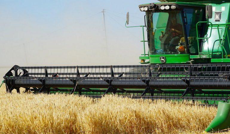 В Запорожской области начался сбор ранних зерновых
