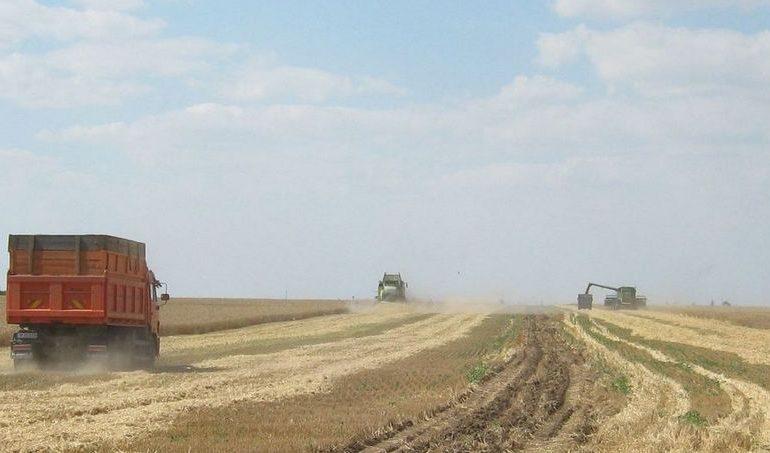 В двух районах Запорожской области завершена уборка ранних зерновых