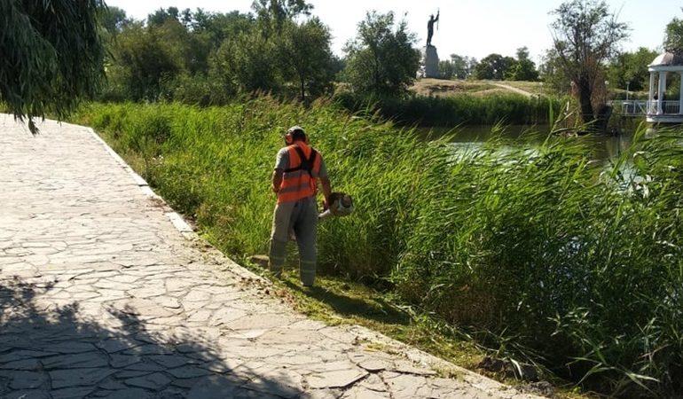 В Запорожье продолжается плановый покос газонов