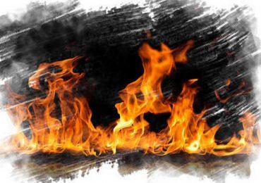 Вогнеборці Запорізької області ліквідували 128 загорянь на відкритих територіях
