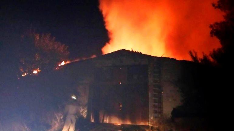 У Гуляйполі на пожежі загинуло майже 40 свиней