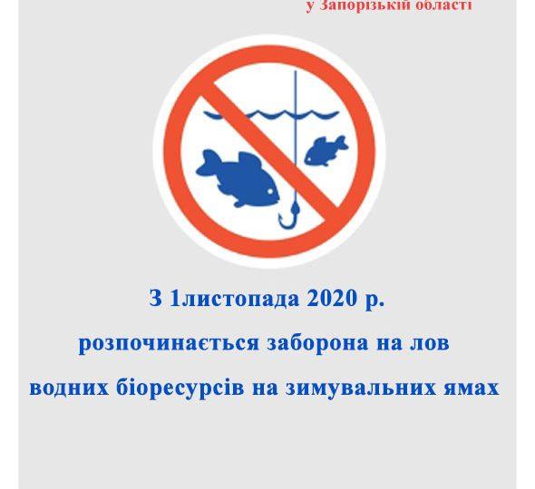 З першого листопада – заборона на лов риби