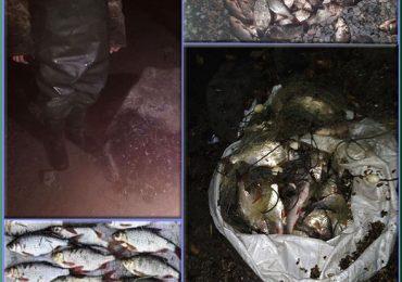 За два тижні на зимувальних ямах зафіксовано 66 порушень правил рибальства