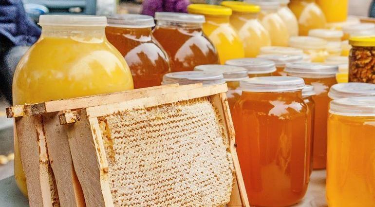 Запорізькі пасічники можуть втричі збільшити експорт меду