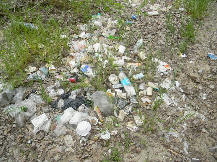 Погуляли: мусорная свалка в Запорожье – под каждым кустом